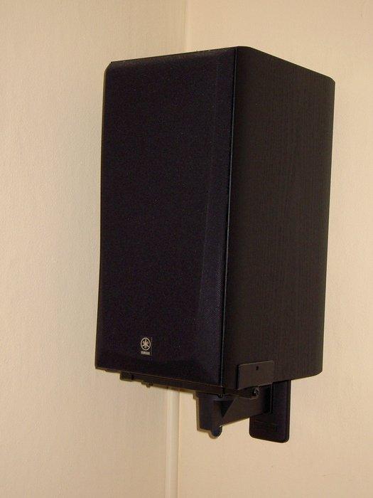 Surround högtalaren