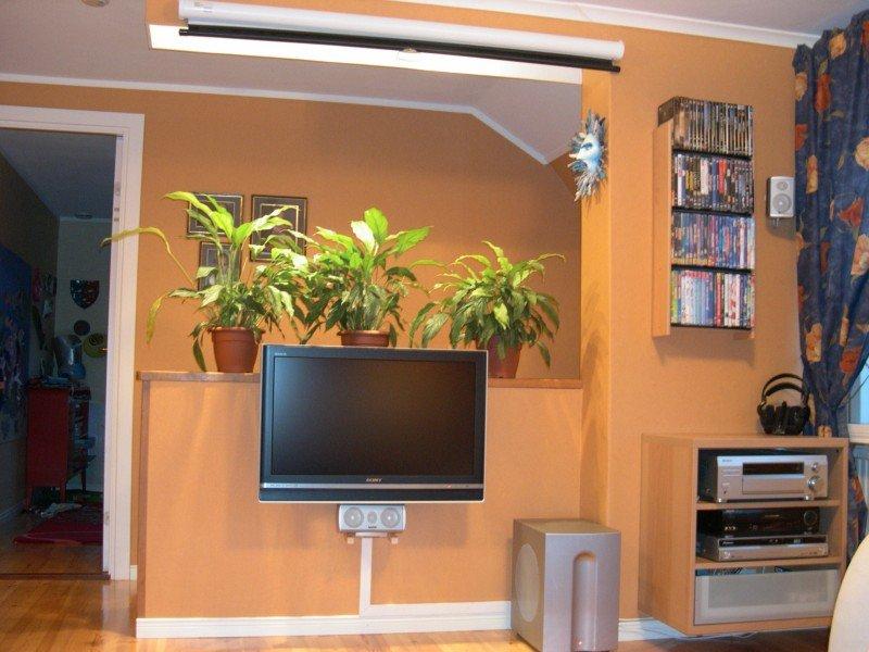 Nya TV:n