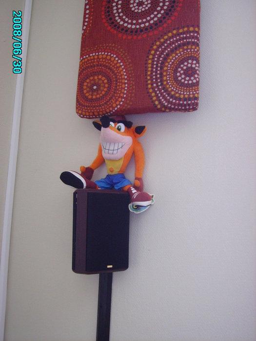 Mr Crash Bandicoot at your service