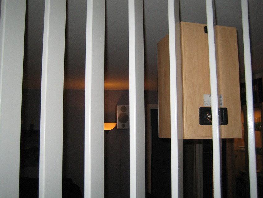 Bild på surrarna från hallen genom spaljén.