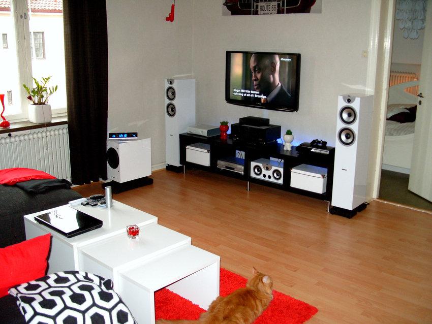 Tv rummet med katten