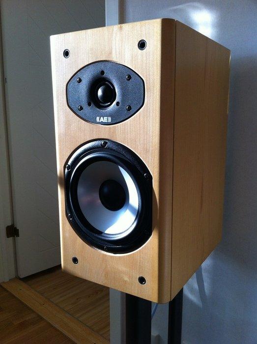 Acoustic Energy Aesprit 300