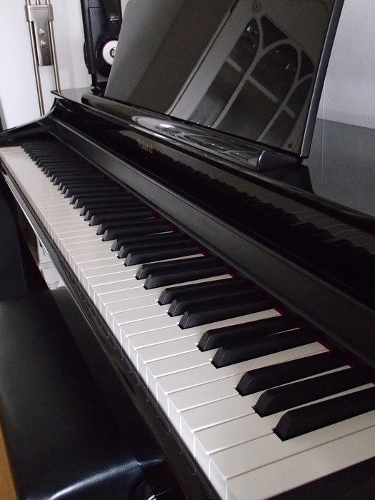 Roland HP-305