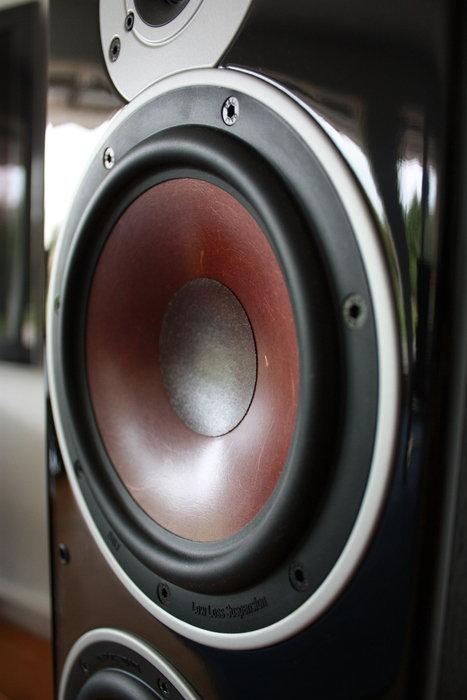 Front speaker's membrane