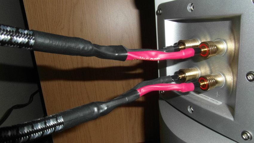 Audioquest Type 8 i bi-amp in till Audiovector Ki3 Signature